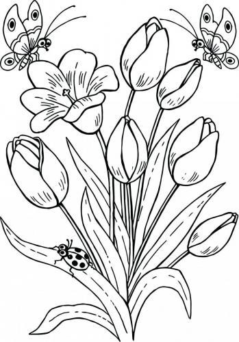 Disegni Fiori Stilizzati Da Colorare : disegni, fiori, stilizzati, colorare, Fiori, Colorare:, Immagini, Stampare, Colorare, Tutto, Donna
