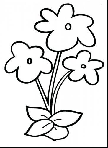 Fiore Disegni Per Bambini : fiore, disegni, bambini, Fiori, Facili, Disegnare