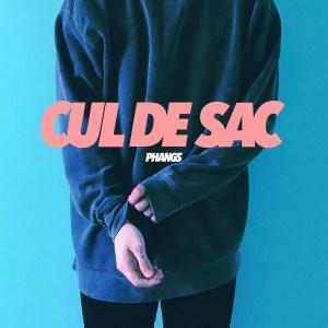 Cul De Sac album art - PHANGS