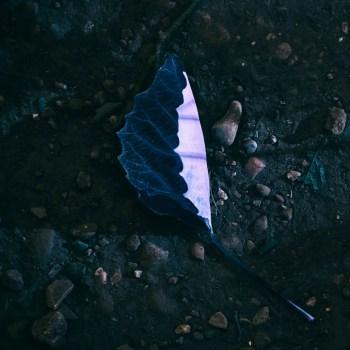 Kayobe - Hidden EP Artwork