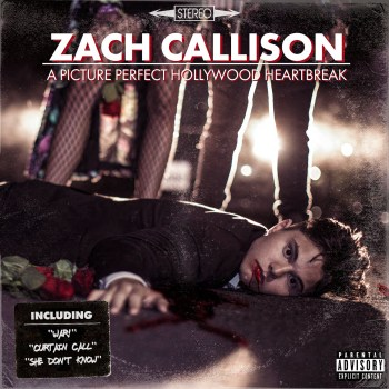 A Picture Perfect Hollywood Heartbreak - Zach Callison