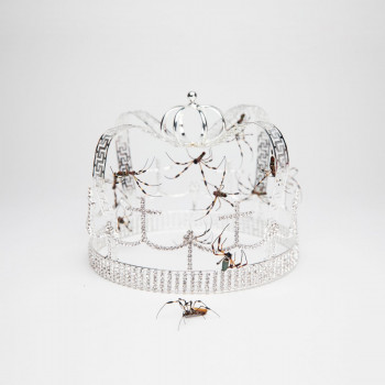 you should see me in a crown - Billie Eilish