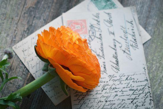 flower-letters-memories