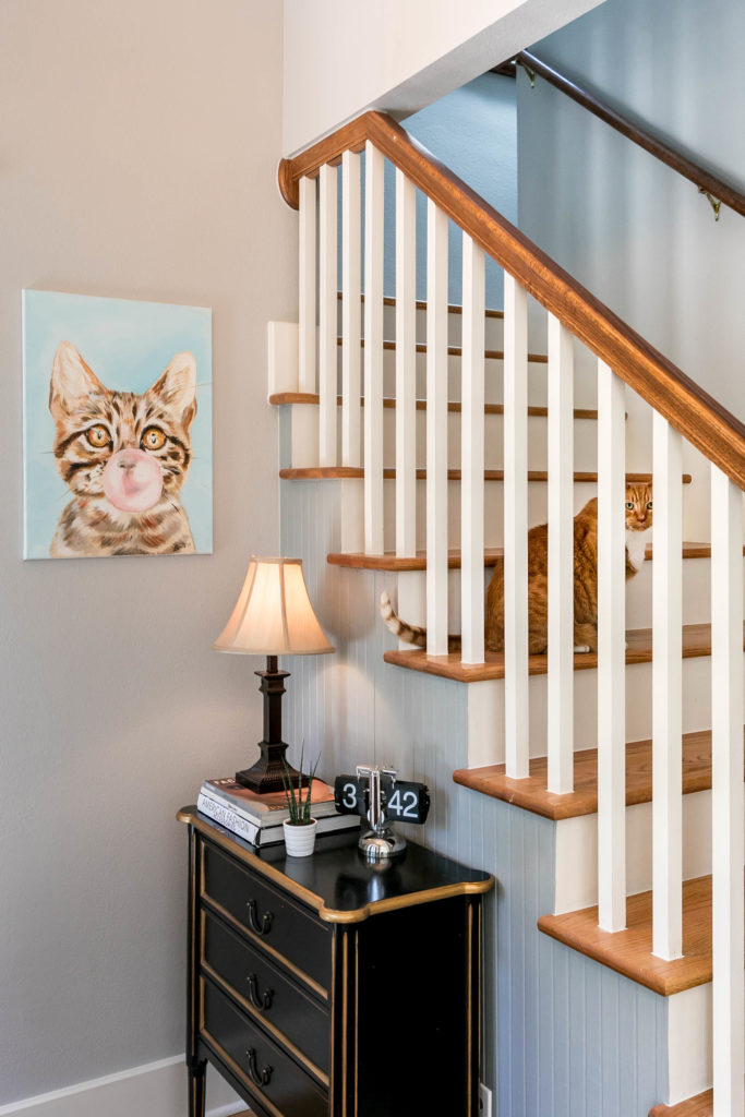 pet-proof your home - entry with cat