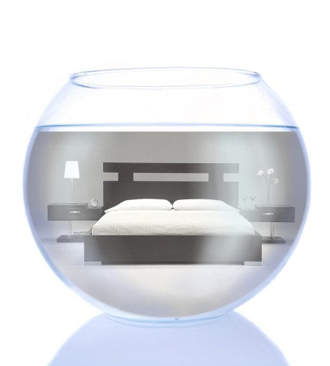 fishbowl-bed