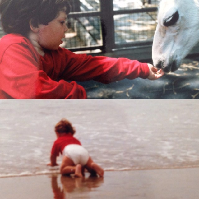 I  allowed them to get close to dangerous farm animals and swim in the ocean