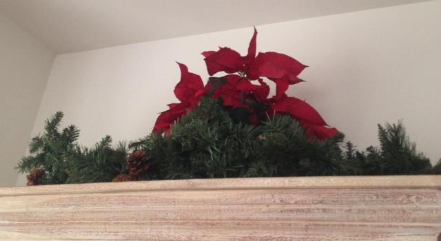pointsettia-and-greens-on-the-cupboard-better-pic