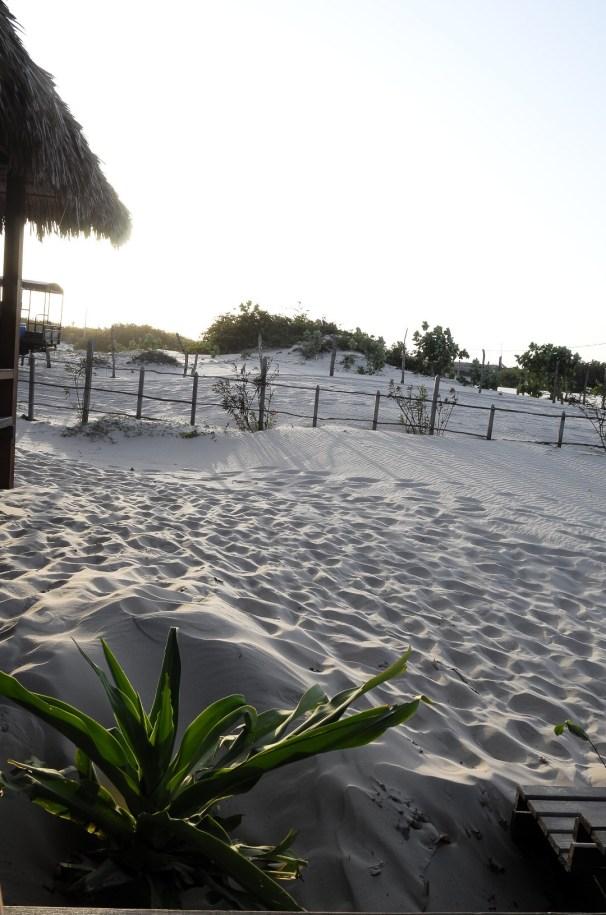 Atins sand dunes