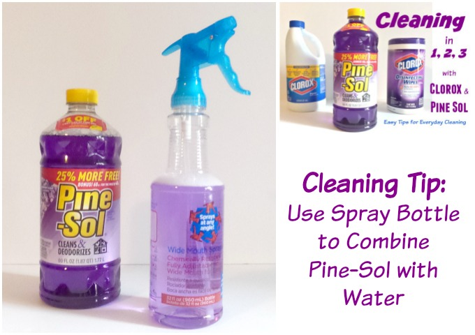 Easy Cleaning Tips using Clorox and Pine-Sol