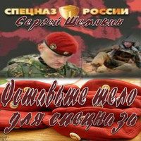 Освободите тело для спецназа (аудиокнига)