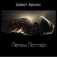 Лелуш Поттер (аудиокнига)