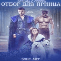 ОТБОР ДЛЯ ПРИНЦА (аудиокнига)