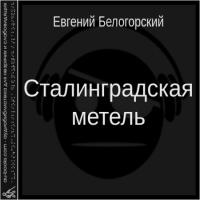 обложка Сталинградская метель