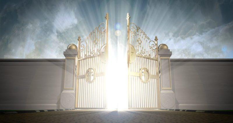 Ce sont des portes vivantes