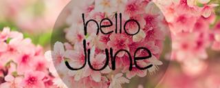 Bilan récapitulatif de juin 2016