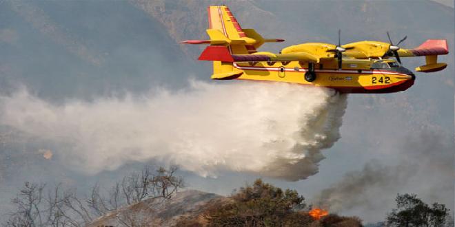 """Chtouka-Aït Baha: l'incendie de """"l'oasis de Targa"""" totalement maîtrisé"""