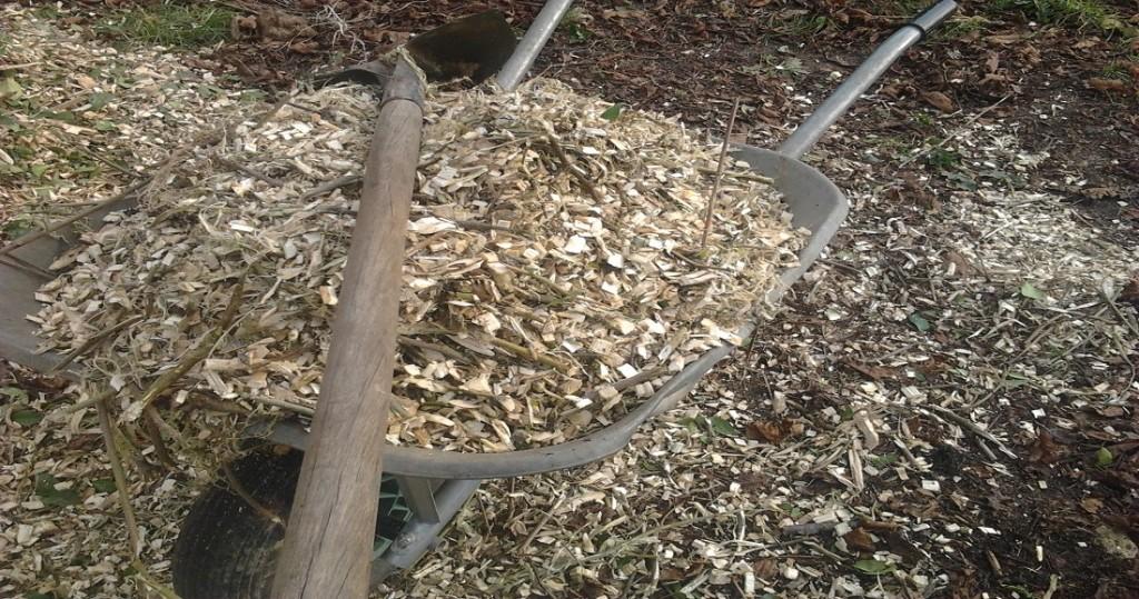 Utilisation du BRF (Bois Raméal Fragmenté) au potager par Gilles Dubus du blog Un jardin bio