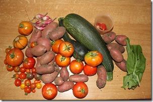 Récolte potager
