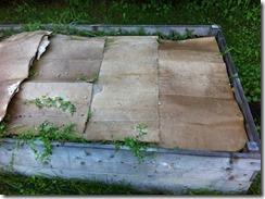 cartons pour recouvrir le compost