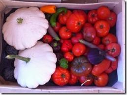 panier-de-légumes