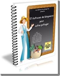 17 astuces de blogueurs pour votre potager