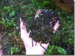 Poignée de compost
