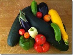 Petite récolte de légumes bio