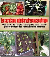 Formation planifier vos semis et plantations