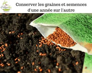 Conserver les graines et semences d'une année sur l'autre