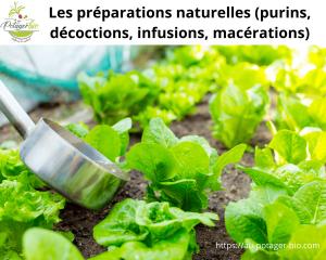 Réussir les préparations naturelles au potager
