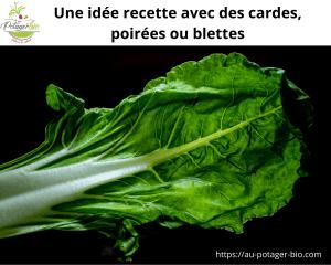 Idée recette cardes, poirées ou blettes