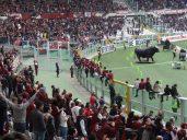 enfants au stadio grande torino