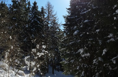 Weekend sulla neve con le ciaspole