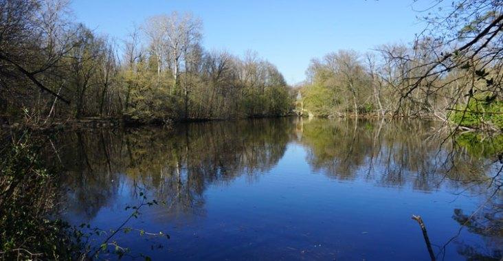 Promenade en famille à la réserve naturelle regionale-étangs Bonnelles en Ile de France