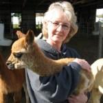 FAQ's about Alpacas — Debbie & Cria
