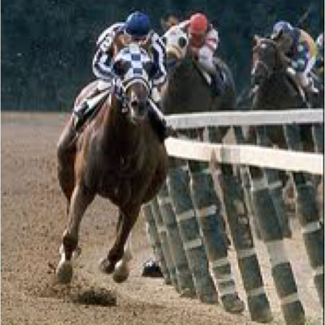 The Great Secretariat – The Greatest Race Horse Of All Time