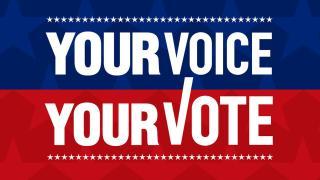 vote 2019, your vote your voice