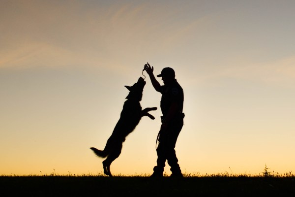 VRPDA, Valley Retired Police Dog Association, Police Canine, Police k9, k9 cop, apd, auburn, auburn wa, city of auburn, police dog, silhouette photo, cop dog, police canine, canine unit, k-9 cop, GSD k9, german shepherd