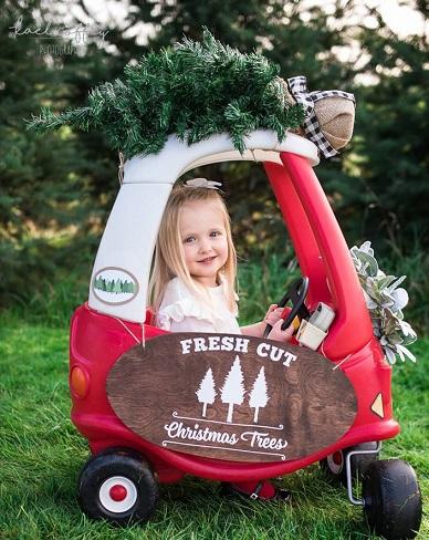 u-cut tree, seattle you cut christmas tree, you cut christmas tree, u-cut tree, you cut tree, holiday tree, christmas tree, Kael Coffey Photography