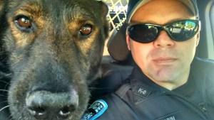 VRPDA, Valley Retired Police Dog Association, Police Canine, Police k9, k9 cop, apd, auburn, auburn wa, city of auburn, police dog, cop dog, police canine, canine unit, k-9 cop, GSD k9, german shepherd