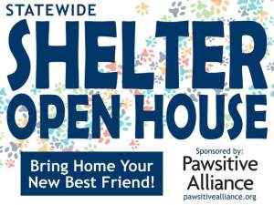 pawsative alliance, shelter open house, 2020 shelter open house, avhs, auburn valley humane society