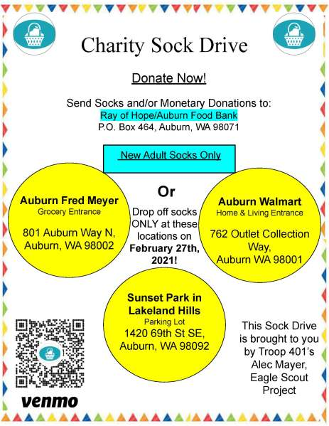 Flyer for Alec Mayer's Eagle Scout sock drive.