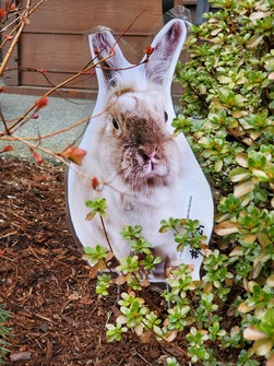 A bunny cut out tucked into greenery.
