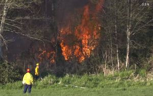 Two firefighters stand in a field at the base of a hillside engulfed in flames