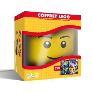 1000573233 LEGO STORAGE HEAD 3D