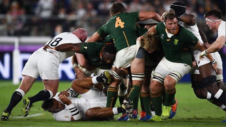 Coupe du Monde de Rugby : les Sud-Africains ont nettement dominé les Anglais pour s'adjuger leur troisième sacre mondial
