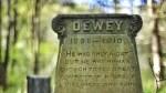 Une belle tombe de chat du XIXe siècle !