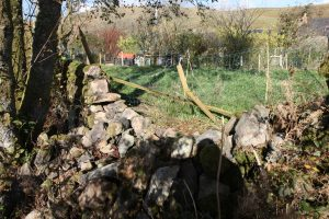 stone dyke blown over