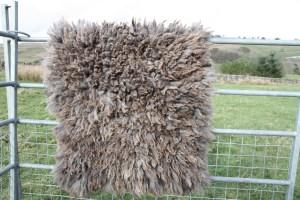 finished felted fleece rug