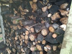 log pile stored